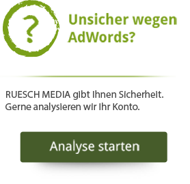 AdWords-Analyse